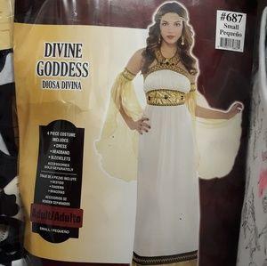 Divine Goddess Adult Small Costume